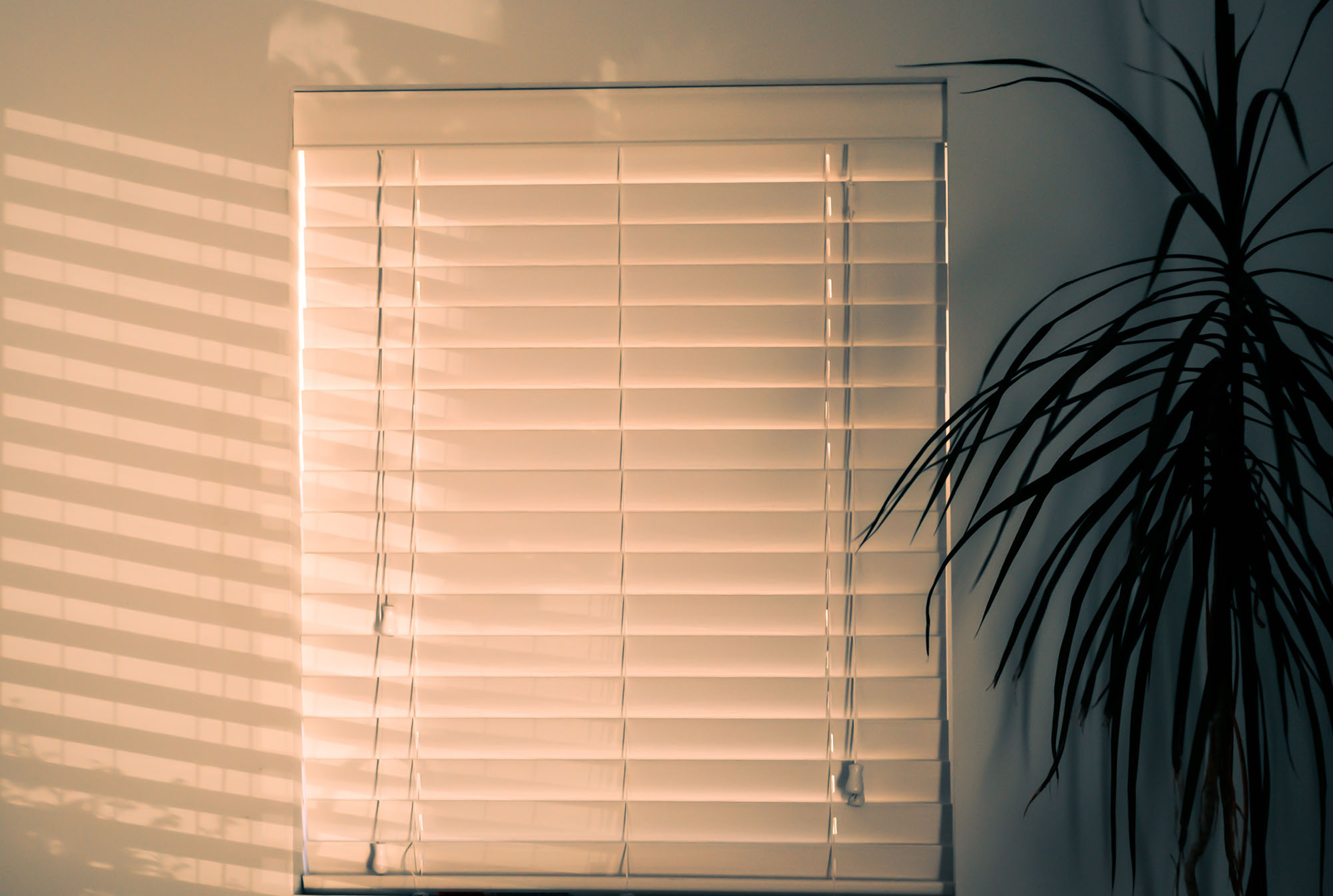 Custom Blinds Port Richey